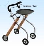Beuken-zilver